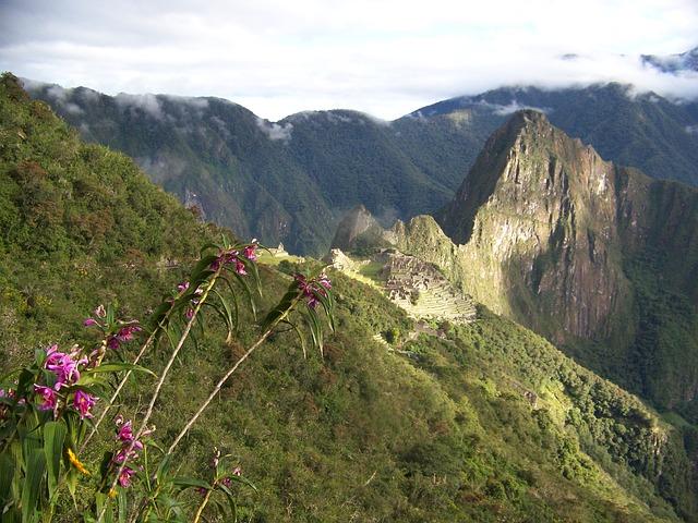 Machu Picchu Perú Orquídeas Paisaje Montañas