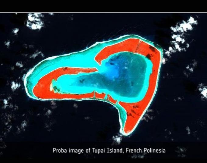 Tupai la isla corazón