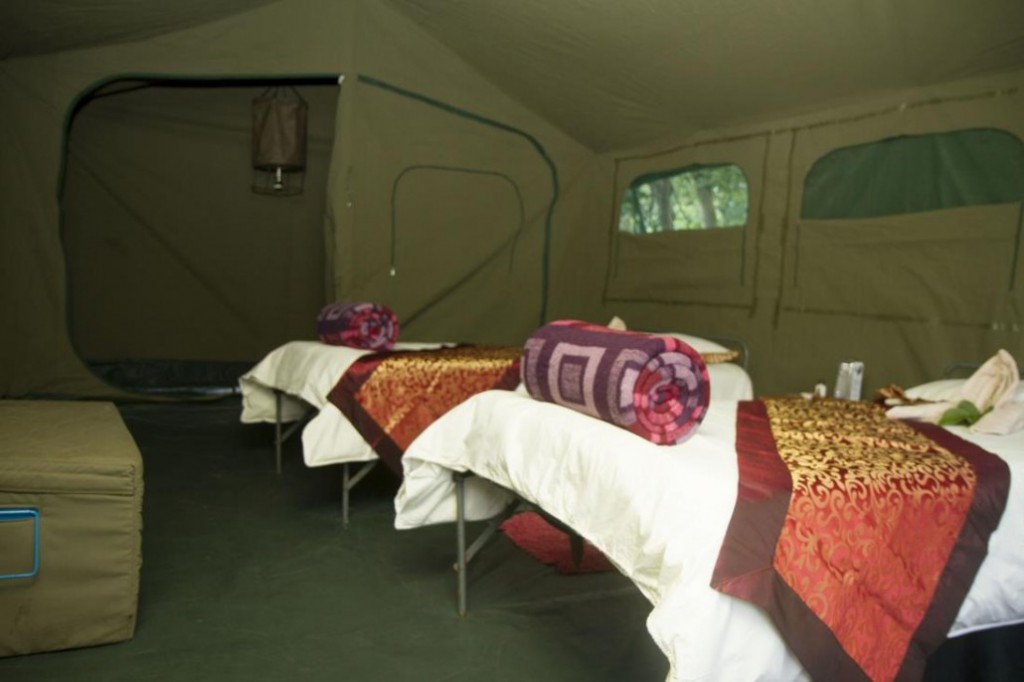 campamento movil en safari 10