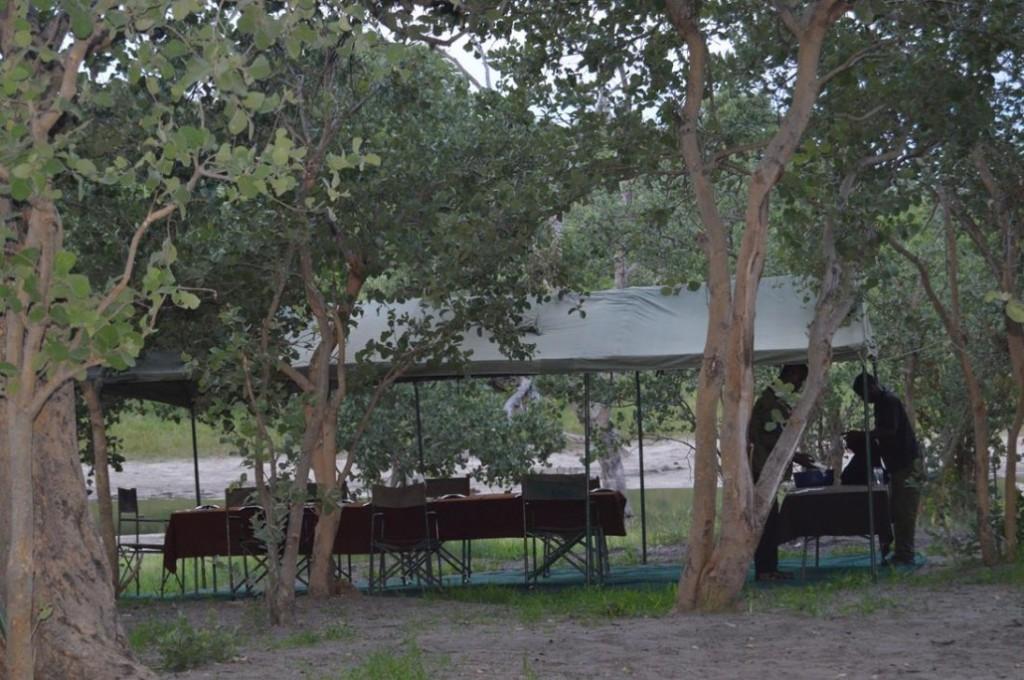 campamento movil en safari 3