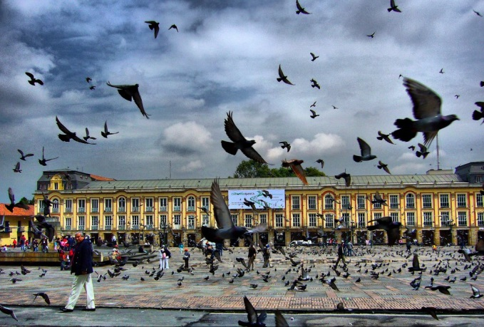 bogota plaza